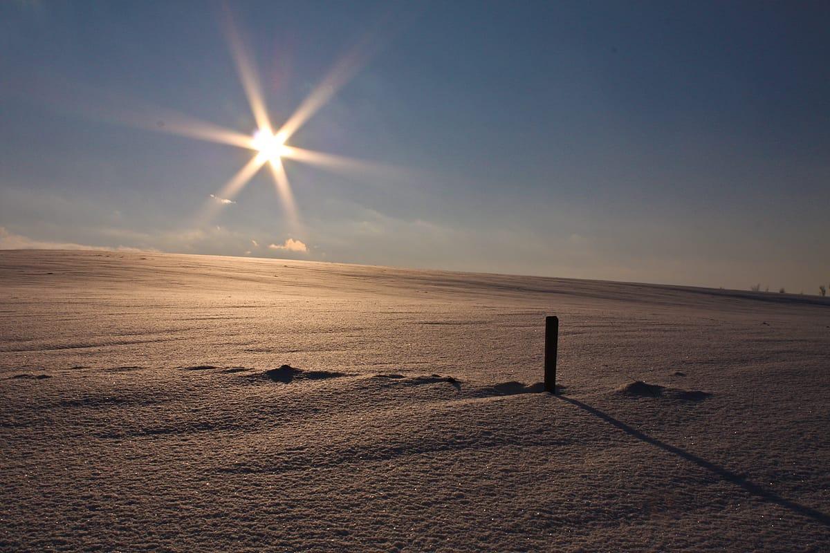 Schneelandschaft